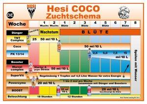 Hesi Coco 1 l