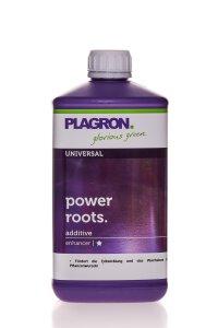 Plagron Power Roots 1 l