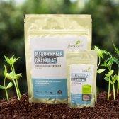 Mykorrhiza Granulat 60 g