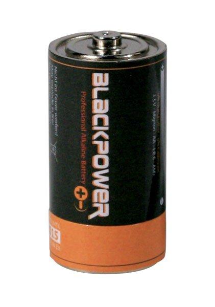 Batterie Versteckdose Typ D
